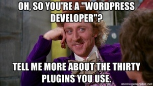 """Wordpress Developer"""